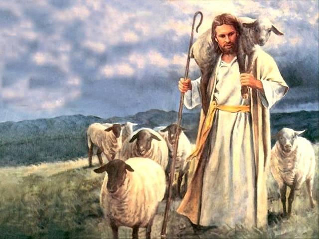 Jesus-bom-pastor.jpg (640×479)